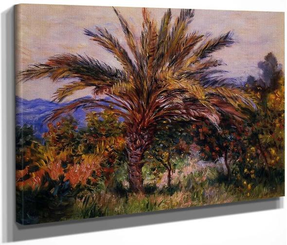A Palm Tree At Bordighera By Claude Oscar Monet