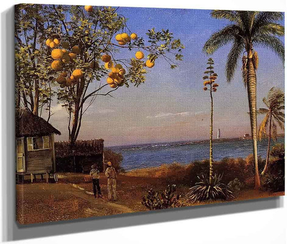 A View In The Bahamas By Albert Bierstadt By Albert Bierstadt