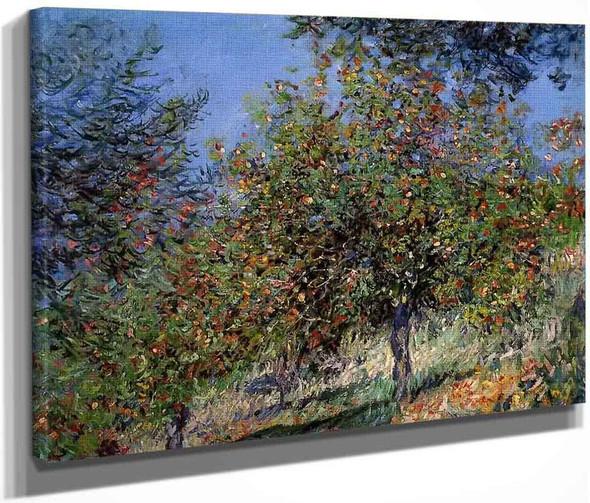 Apple Trees On The Chantemesle Hill By Claude Oscar Monet