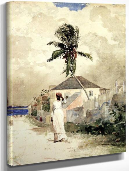 Along The Road, Bahamas1 By Winslow Homer