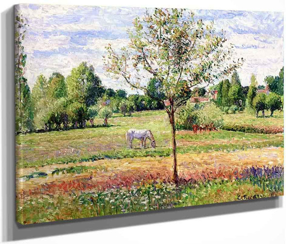 Meadow With Grey Horse, Eragny By Camille Pissarro By Camille Pissarro