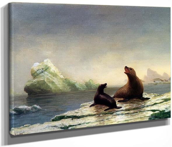 Seals By Albert Bierstadt By Albert Bierstadt