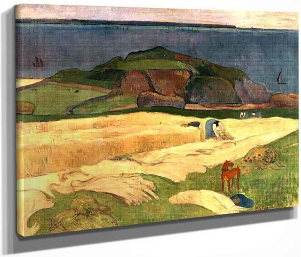 Seaside Harvest, Le Pouldu By Paul Gauguin  By Paul Gauguin