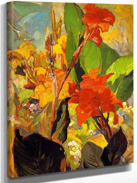 Cannas By Franz Bischoff By Franz Bischoff
