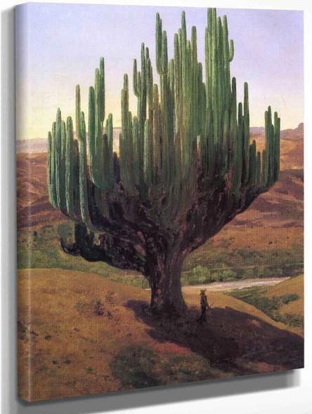Cardon By Jose Maria Velasco