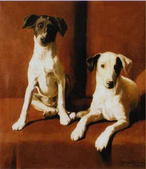 Terriers By Johan Krouthen By Johan Krouthen