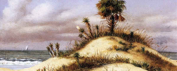 Florida Seascape With Sand Dune, Palm Tree, Yucca, Cactus And Sailboat By William Aiken Walker
