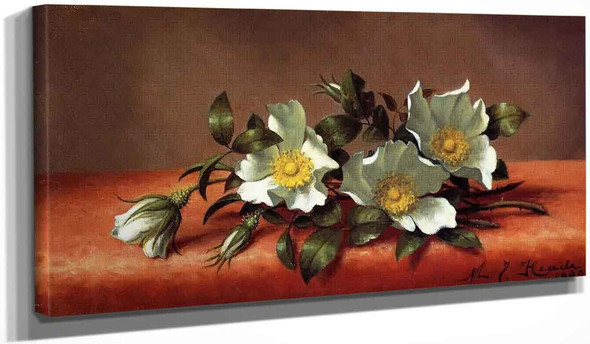 The Cherokee Rose By Martin Johnson Heade