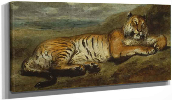 Tiger Resting By Eugene Delacroix By Eugene Delacroix