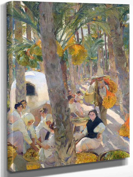 Elche, The Palm Grove By Joaquin Sorolla Y Bastida