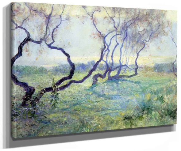 Tamarisk Trees In Early Sunlight By Guy Orlando Rose