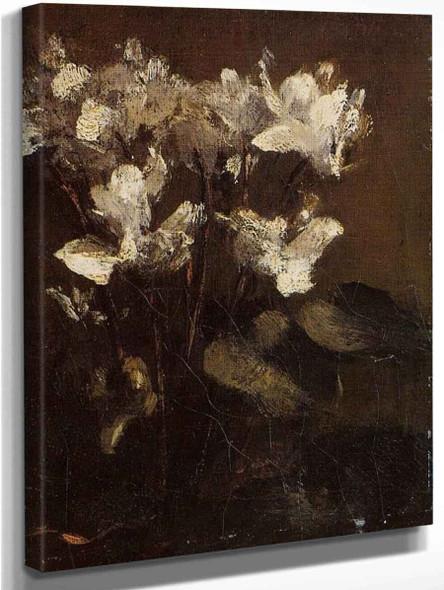 Flowers, Cyclamens By Henri Fantin Latour By Henri Fantin Latour