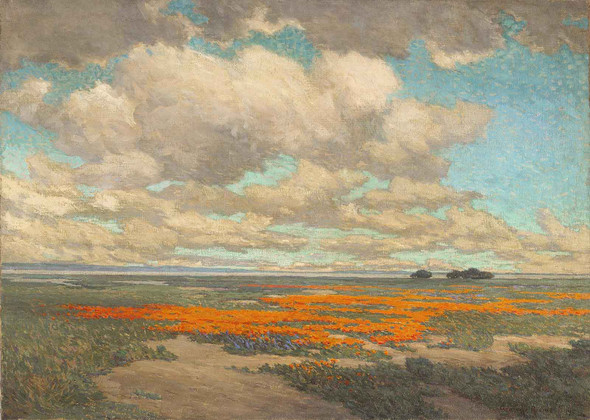 A Field Of California Poppies by Granville Redmond
