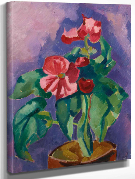 Pink Begonias (Still Life Pink Begonia) by Marsden Hartley