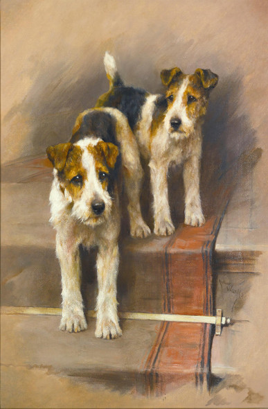 Terriers On A Staircase by Arthur Wardle