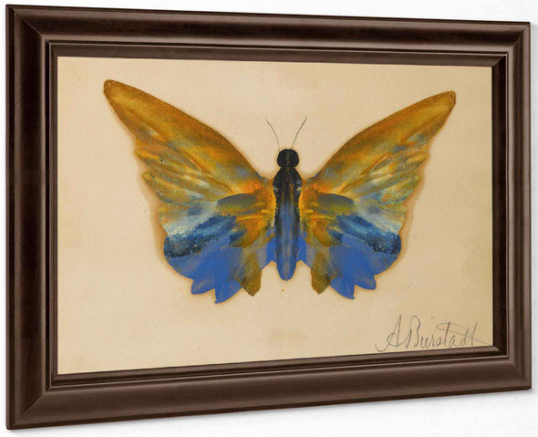 Albert Bierstadt Butterfly by Albert Bierstadt