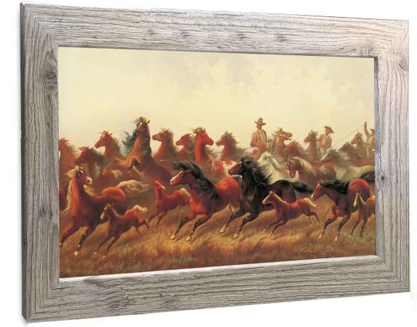 Wild Horses Peter Hassrick