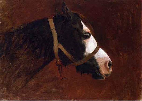 Profile Of A Horse By Jean Leon Gerome  By Jean Leon Gerome