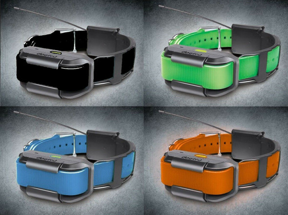 Dogtra Pathfinder Additional GPS Collar - Blue