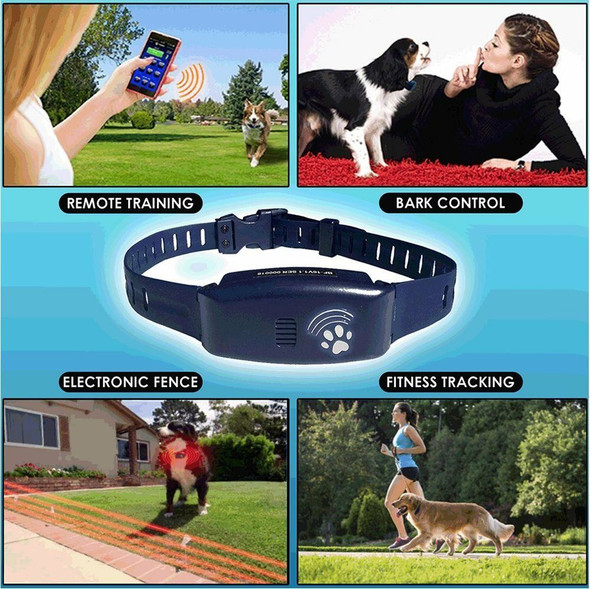 High Tech Pet Dog Bluefang X25 4 in 1 Complete Containment System