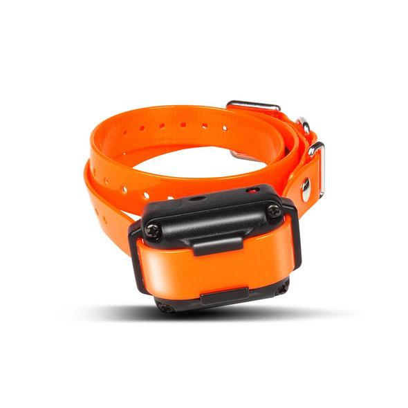 Dogtra iQ Remote Dog Training Collar-iQ Plus Expandable