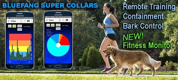 High Tech Pet Bluefang 4-in-1 Collar BF-25 Remote Training, Bark Control,Fitness