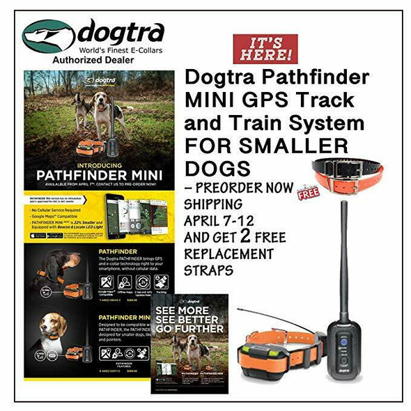 Pathfinder 2 Dog Mini Track And Train System + 1 Free Strap Water Bowl