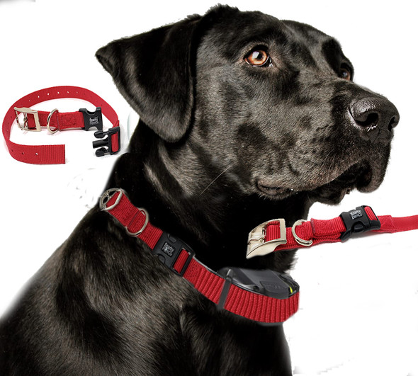 "Sparky Pet Co Compatible E-Collar 3/4"" Nylon Double Buckle Quick Snap Replacement"