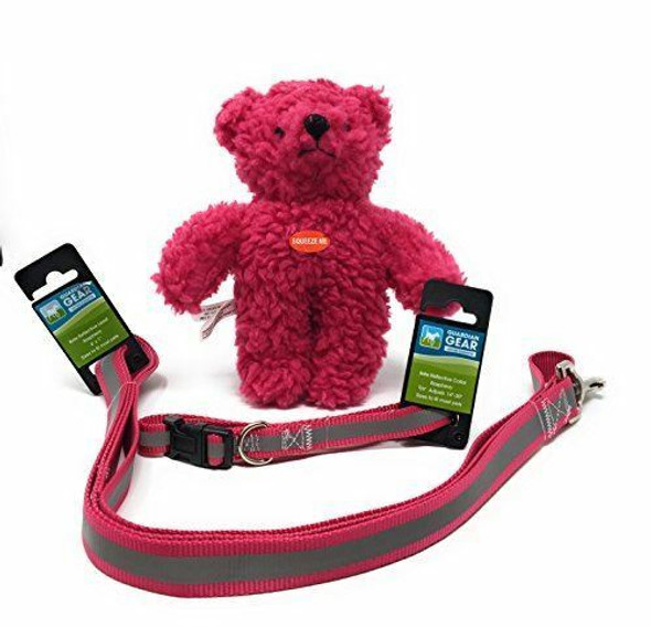 Guardian Gear Pink Reflective Dog Collar & Leash Set, withFree Zanies Teddy Bear T