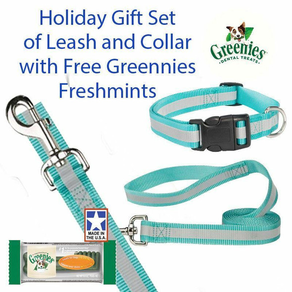"Guardian Gear Reflective 4 FT Lead 3/8"" 6-10"" Collar Gift Set & Free Greenies"