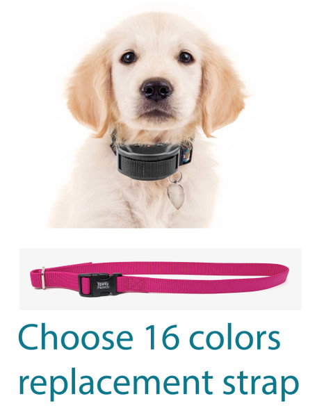 Sparky Pet Co Stay And Play Compatible 3/4 Inch Replacement Collar Solid Nylon Strap- 13 Pawfect Colors