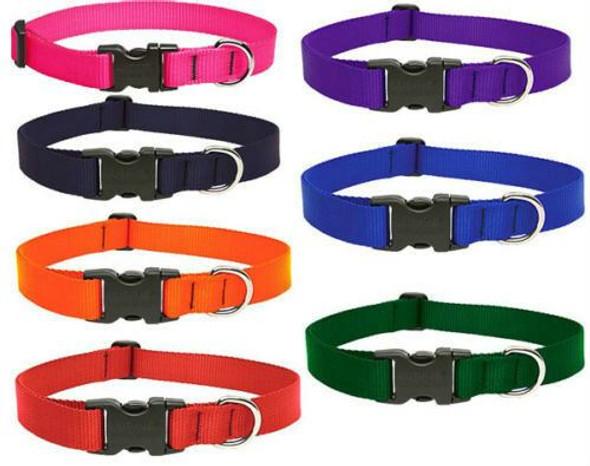 "Lupine Dog Collar 3/4"" Orange Red Black Pink Orange Purple Green Indestructable"