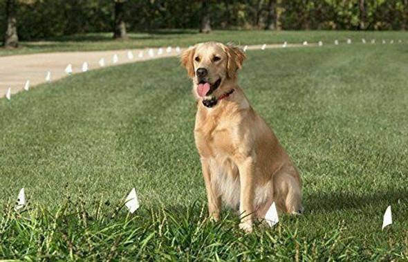 """Sparky Pet Co 1"""" Nylon Dog Fence Collar Receiver  Strap 3 Non Consecutive Hole"""