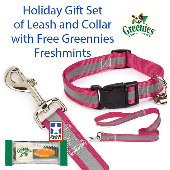 "Guardian Gear Reflective 4 FT Lead & 6-10"" 3/8"" Collar Gift Set Free Greenies"