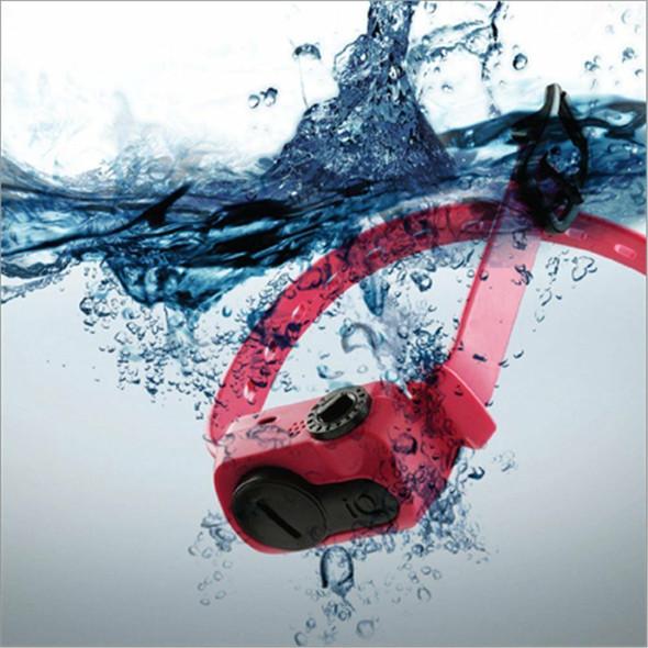 Dogtra iQ No Bark Collar Blue