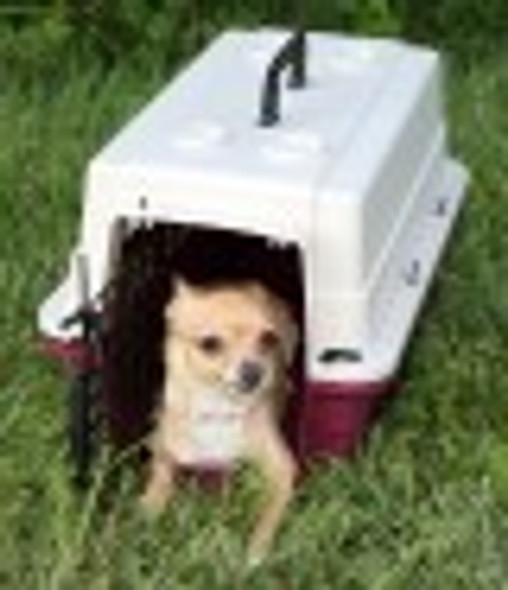 Protective Carrier/Crate - Small