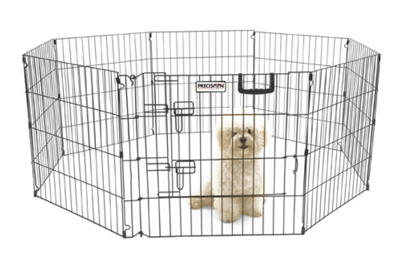 Ultimate Exercise Pen - 24