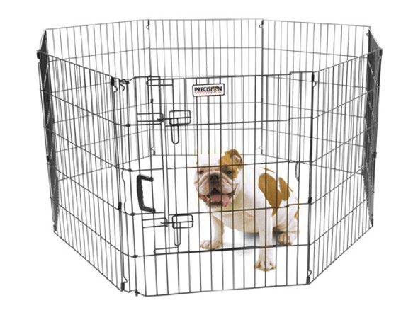 Ultimate Exercise Pen - 30