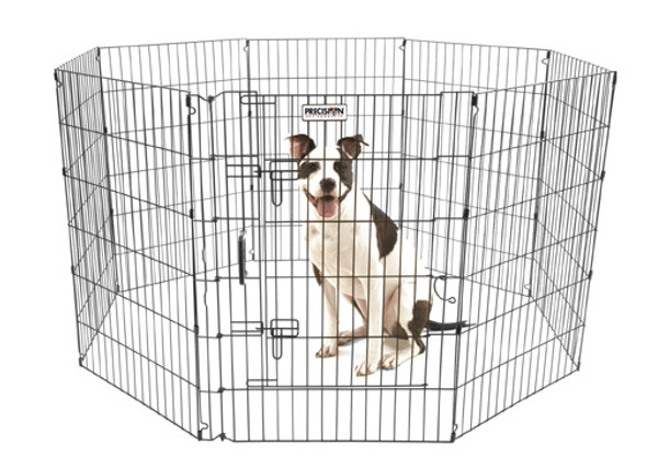 Ultimate Exercise Pen - 36