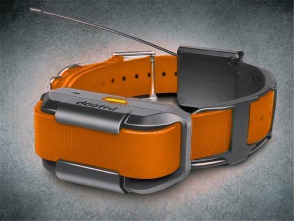 Dogtra Pathfinder Additional GPS Collar - Orange