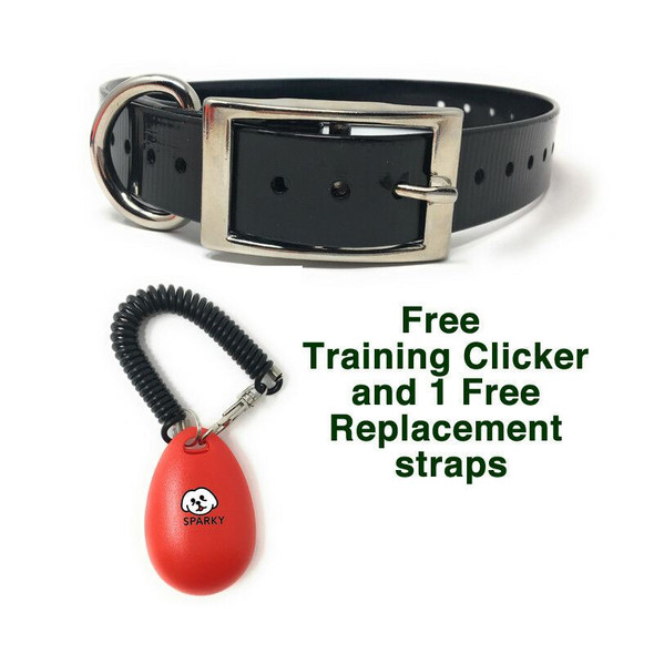Dogtra 200 C 1 Dog System with Free Strap And Clicker