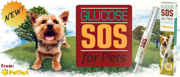 Advocate Pettest Glucose Sos Rapid Energy or Diabetic Pets Cat Dog 1 oz Free Water Bowl