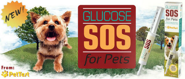 Advocate PetTest Advocate Dog Cat Pet Glucose SOS for Pets-2 Pack with Free Water Bowl