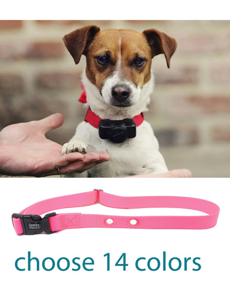 "1"" 2 Hole Raspberry Nylon Dog Medium Receiver Strap Holes Spaced at 1.25"""