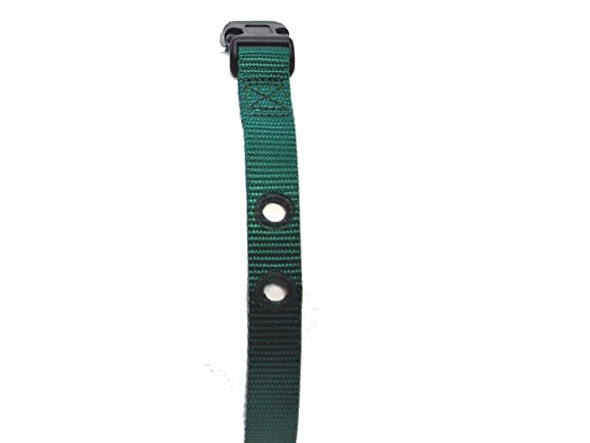 1 Inch 2 Hole Universal Dog Fence Replacement Strap Green