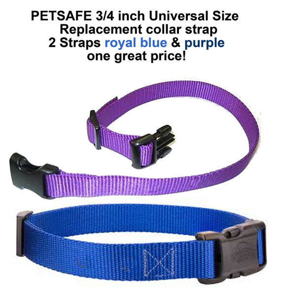 PetSafe 3/4 Inch Universal Size Replacement Collar Strap- 2 Straps Blue & Purple