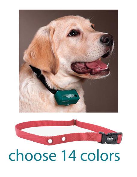 "Sparky Pet Co PetSafe Compatible 3/4"" Large Raspberry Pink Nylon 2 Hole 1.25"