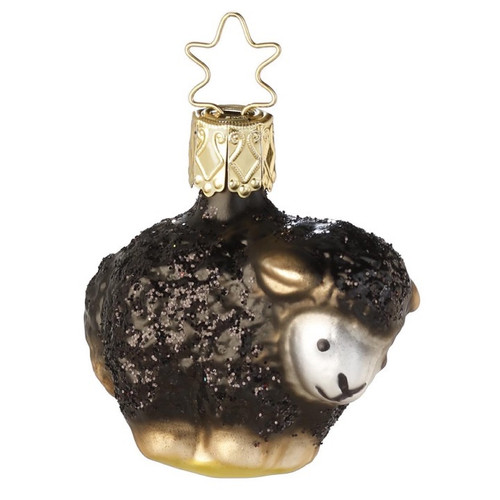 Baby Baa Black Sheep