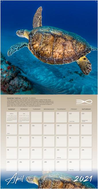 2021 Exotic Oceans Calendar