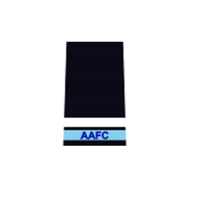 AAFC Cadet Under Officer (CUO) Service Dress Rank Slide Pair